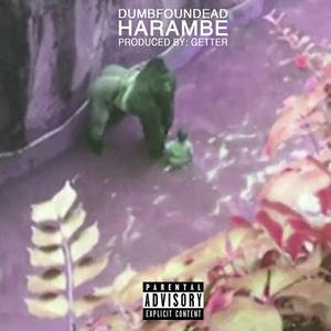 Image for 'Harambe'