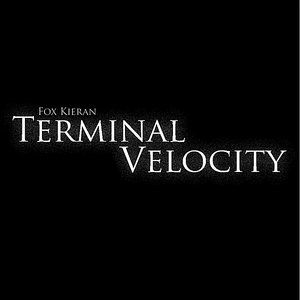 Image for 'Terminal Velocity'