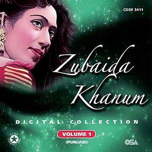 Image for 'Digital Collection Volume 1 (Punjabi)'
