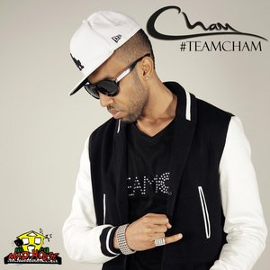 Image for 'Team Cham'