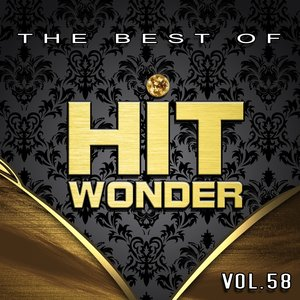 Image for 'Hit Wonder: The Best Of, Vol. 58'
