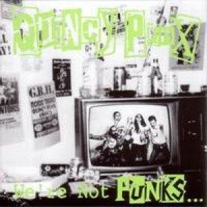 Imagen de 'We're Not Punks... But We Play Them On TV'