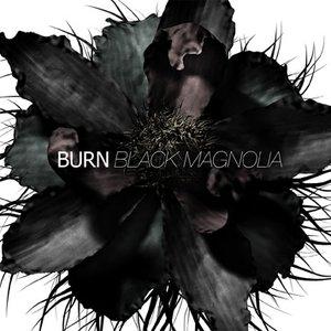 Image for 'BLACK MAGNOLIA'