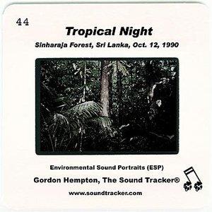 """Tropical Night""的封面"