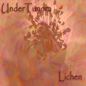 Image for 'Lichen'