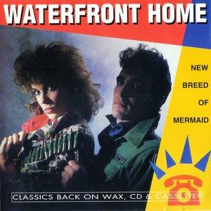 Bild für 'Waterfront Home'