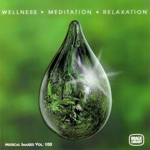 Image for 'Wellness Meditation Relaxation: Musical Images, Vol. 100'