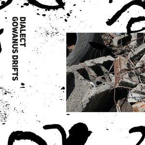 Image for 'Gowanus Drifts'