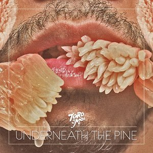 Immagine per 'Underneath the Pine'