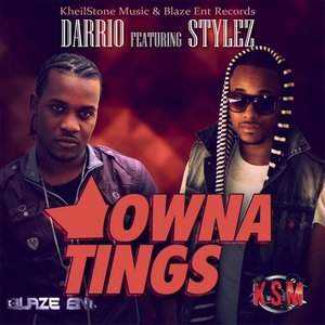 Image for 'Owna Tings (feat. Stylez)'