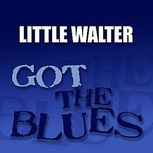 Bild für 'Got the Blues'