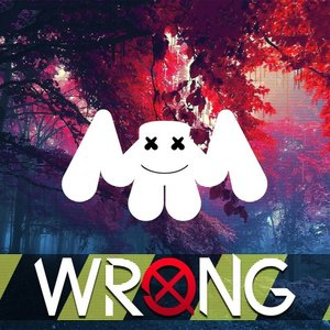 Image for 'Wrong'