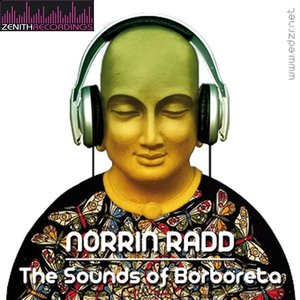 Image for 'The sounds of Borboreta'