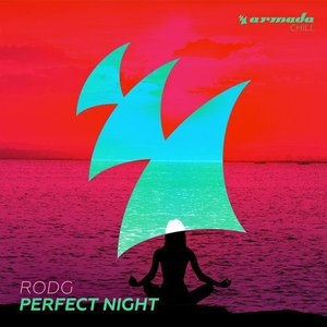 Image for 'Perfect Night'