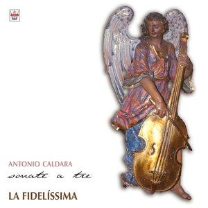 Image for 'Sonata No. 5, en la mineur : Adagio'