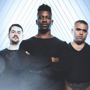 Bild für 'Animals as Leaders'
