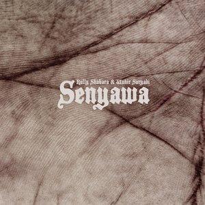 Image for 'Senyawa'