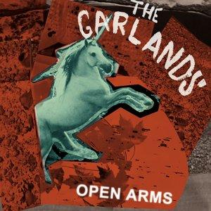Immagine per 'Open Arms'