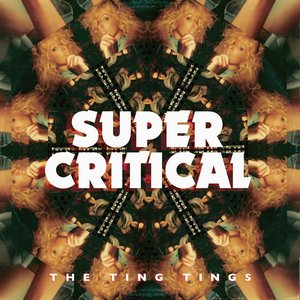 Image for 'Super Critical'