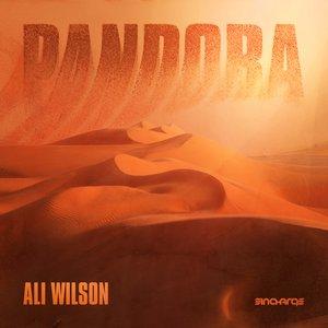 Bild für 'Pandora (Dyor Remix)'
