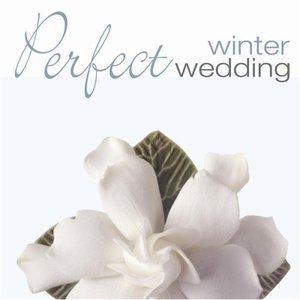 Bild för 'Perfect Winter Wedding'