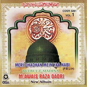 Image for 'Bulbul-e-Madina'