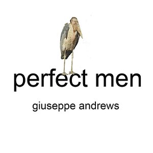 Immagine per 'Perfect Men'