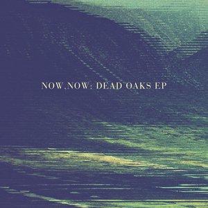 Image pour 'Dead Oaks EP'