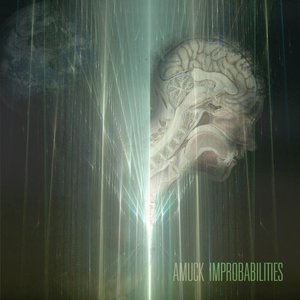 Image for 'Improbabilities'