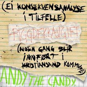 Image for '(Ei Konsekvensanalyse I Tilfelle) Piggdekkavgift [Noen Gang Blir Innført I Kristiansand Kommune]'
