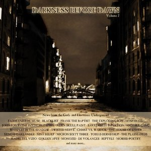 Image for 'Darkness Before Dawn Volume 2 (2 x CD 2010)'