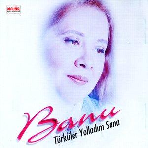 Image for 'Türküler Yolladım Sana'
