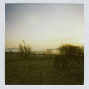 Image for 'Fenrir'