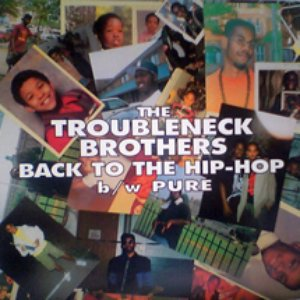 Image for 'The Troubleneck Brothers'