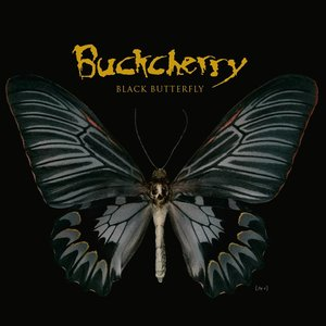 Image for 'Black Butterfly (Edited)'