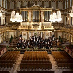 Image for 'Wiener Johann Strauss-Orchester/Willi Boskovsky'