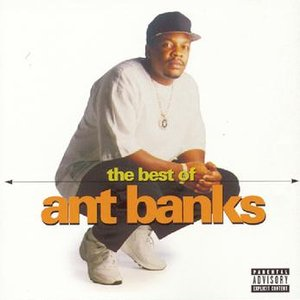 Image pour 'The Best Of Ant Banks'