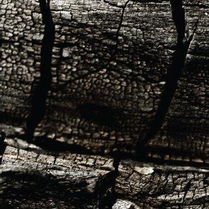 Image for 'shpwrck'