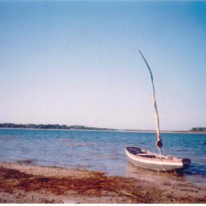 Image for 'Vidas Volantes'
