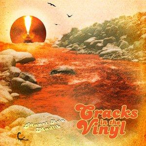 Immagine per 'Cracks In The Vinyl'