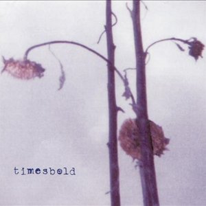 Image for 'Timesbold'