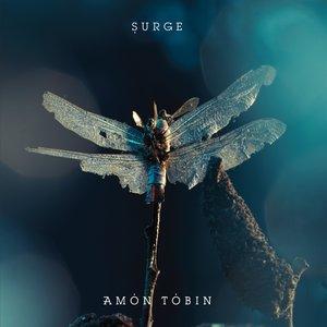 Imagem de 'Surge (16bit Remix)'