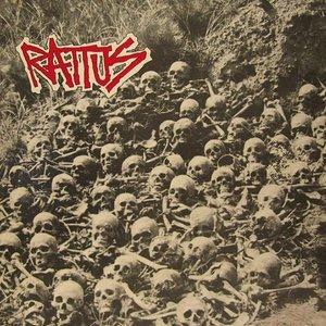 Image pour 'Rattus'