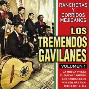 Bild für 'Rancheras y Corridos Mejicanos 1'