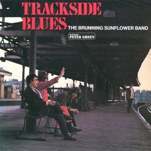 Immagine per 'Trackside Blues'