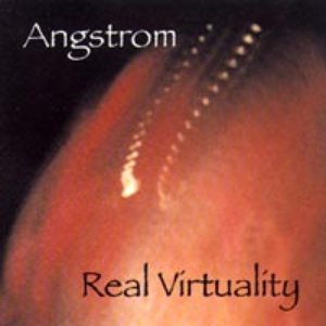 Image for 'Real Virtuality'