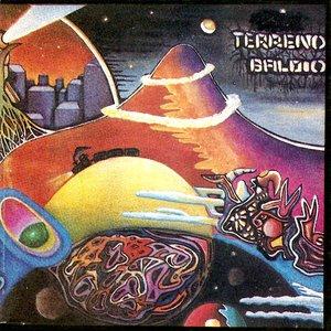 Image for 'Terreno Baldio'