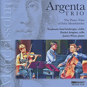 Image for 'Trio in D minor, Op. 49: II. Andante con moto tranquillo'