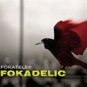 Image for 'Fokadelic'