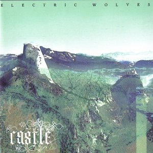 Immagine per 'Electric Wolves'